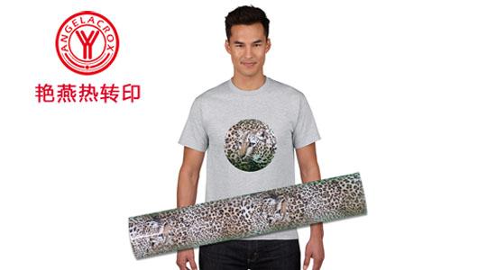 热转印产品常用于贴身衣物